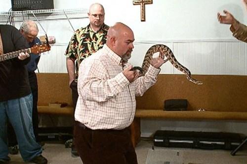 Người dạy rắn tử vong vì rắn